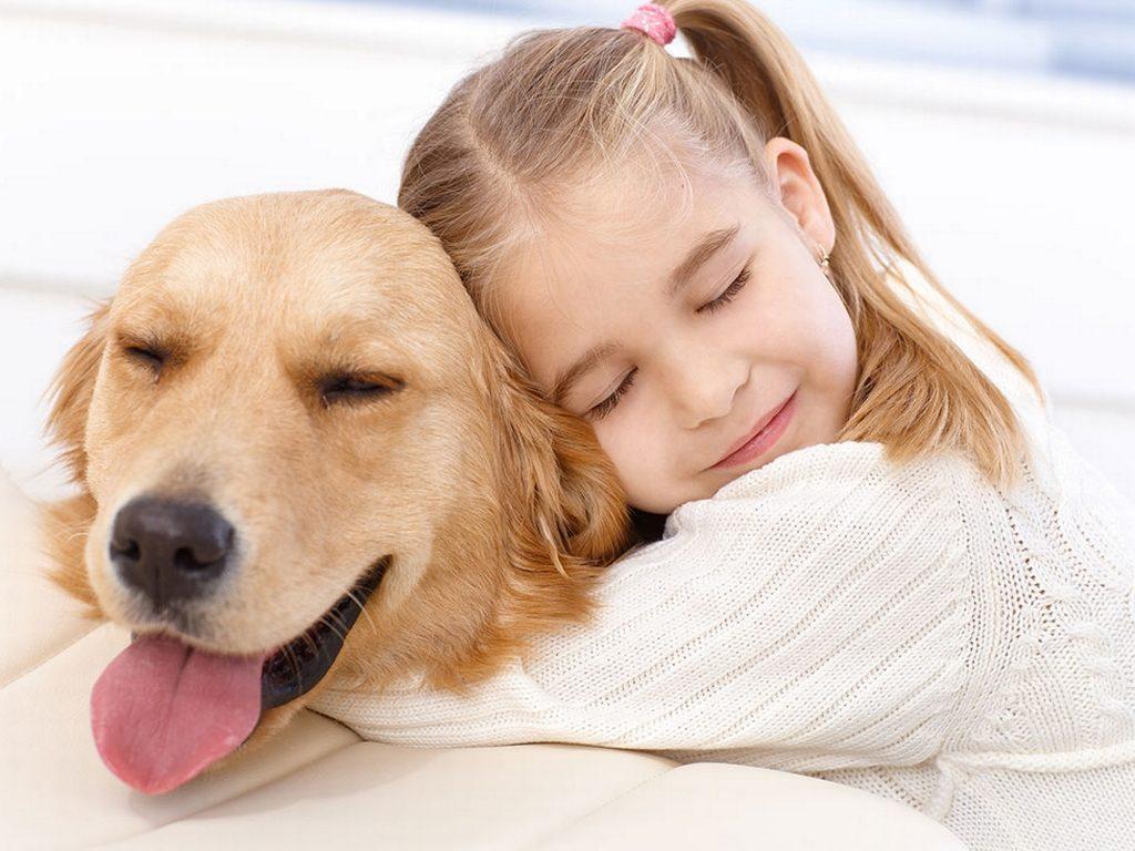Assicurazione sanitaria animali