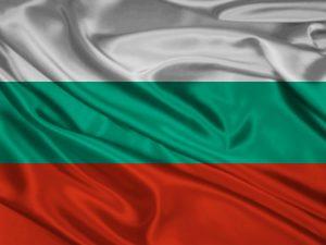 Assicurazione bulgara: è legale? Rischi e vantaggi